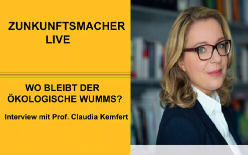 Interview-Claudia-Kemfert-495x310 Start